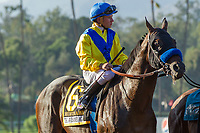 "ARCADIA, CA. SEPTEMBER 30: #6 Mubtaahij, ridden by Drayden Van Dyke, in the post parade of the Awesome Again Stakes (Grade l) ""Win and You're In Classic Division"" on September 30, 2017 at Santa Anita Park in Arcadia, CA.(Photo by Casey Phillips/Eclipse Sportswire/Getty Images)"