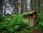 Outhouse on an Island, Southeastern Alaska