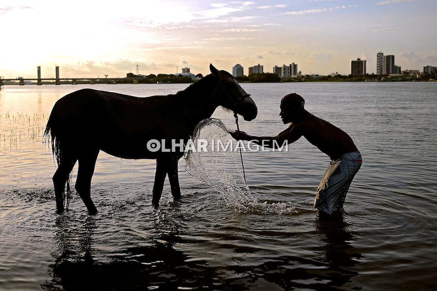 Homem lava cavalo no Rio Sao Francisco em Juazeiro. Bahia. 2013. Foto de João Machado