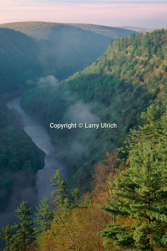Pine Creek Gorge<br />
