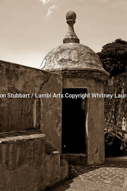 2007 Copyright  Whitney Lauren Robinson Stubbart / Lambi Arts Sepia Photography Puerto Rico, buildings, insects, architecture, botanical,