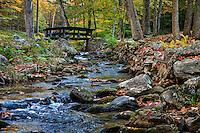Footbridge over stream, Maceddonia Brook State Park, Kent, Connecticut, USA