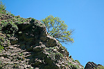 Rocky hillside blue sky green tree Poqueira gorge valley, High Alpujarras, Sierra Nevada, Granada Province, Spain