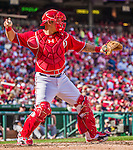 28 September 2014: Washington Nationals catcher Wilson Ramos in action against the Miami Marlins at Nationals Park in Washington, DC. The Nationals shut out the Marlins 1-0, caping the season with the first Nationals no-hitter in modern times. The win also notched a 96 win season for the Nats: the best record in the National League. Mandatory Credit: Ed Wolfstein Photo *** RAW (NEF) Image File Available ***