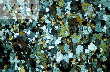Thin section of gneiss. - LM