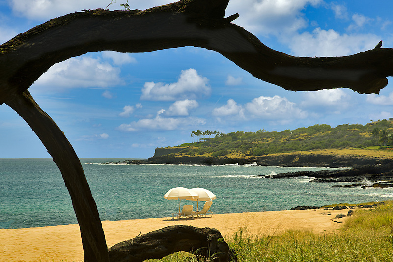 Beach umbrella and tree branch. Beach at Four Seasons, Lanai, Hawaii.