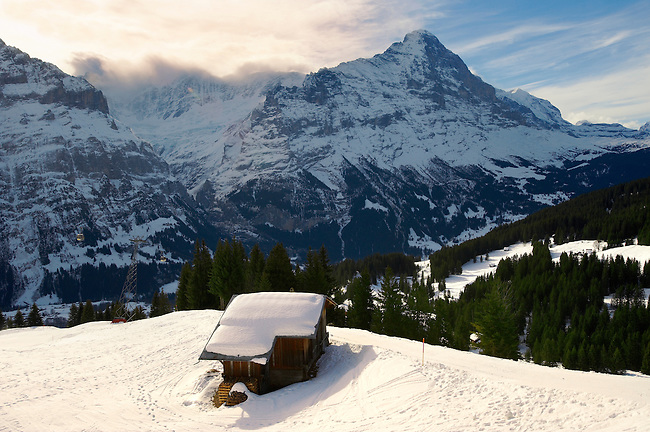Alpine slopes with snow  looking towards the Wetterhorn Mountain