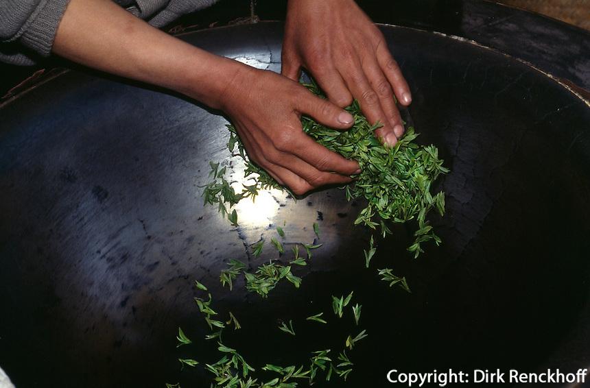 Trocknen von Teeblättern im Drachenbrunnendorf bei Hangzhou, China