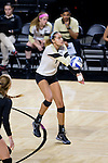 Kylie Long (12) of the Wake Forest Demon Deacons digs the ball against the Loyola Ramblers in the LJVM Coliseum on September 3, 2016 in Winston-Salem, North Carolina.  The Ramblers defeated the Demon Deacons 3-2.   (Brian Westerholt/Sports On Film)