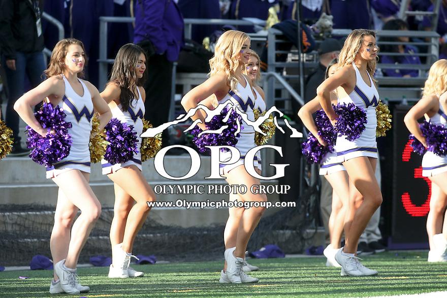 22 October 2016:  Washington cheerleader Becca Love entertained fans at the University of Washington in Seattle, WA.