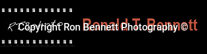 "Fine art Photography and Stock Photography by Ronald T. Bennett Photography ©, FINE ART and STOCK PHOTOGRAPHY FOR SALE, CLICK ON  ""ADD TO CART"" FOR PRICING,"