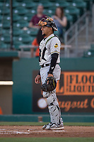 Salt Lake Bees catcher Jose Briceno (10) during a Pacific Coast League game against the Fresno Grizzlies at Chukchansi Park on May 14, 2018 in Fresno, California. Fresno defeated Salt Lake 4-3. (Zachary Lucy/Four Seam Images)