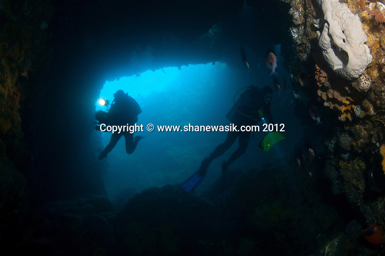 The large cavern at Astrolabe Reef is explored by divers. The interior of the reef can bee send at the entrance to the cave and lights are needed to explore the interior. This image  was taken prior to the MV Rena wrecking on Astrolabe Reef in 2011. It is understood that the weight of the Rena has damaged this geological feature and popular dive site.