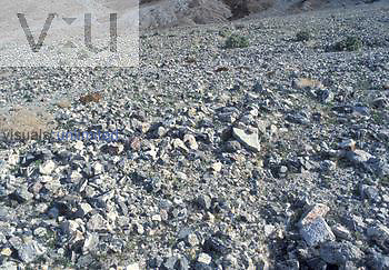 Close-up of alluvium on an alluvial fan, Death Valley, California, USA.