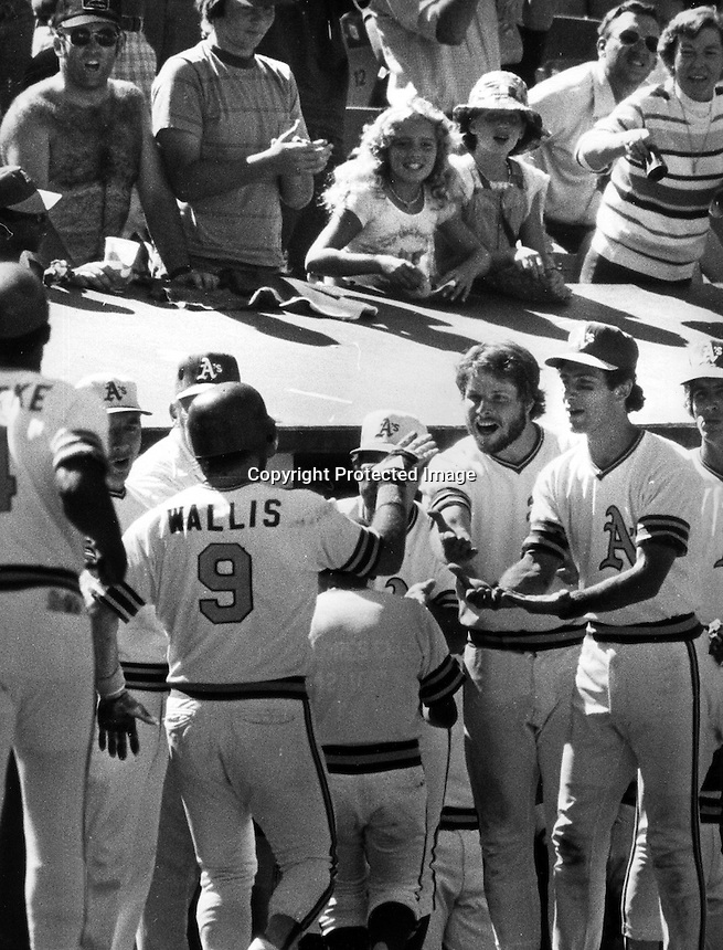Oakland A's Joe Wallis is greeted by teammates, Wayne Gross, and Rob Picciolo. (1978 photo by Ron Riesterer)