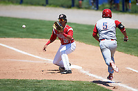 Batavia Muckdogs first baseman Brad Haynal (23) stretches for a throw as Andrew Amaro (5) runs through the bag during a game against the Williamsport Crosscutters on July 16, 2015 at Dwyer Stadium in Batavia, New York.  Batavia defeated Williamsport 4-2.  (Mike Janes/Four Seam Images)