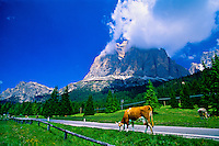 Paso di Falzarego (near Cortina d'Ampezzo), Dolomites, Northern Italy