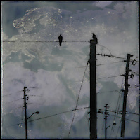 Encaustic photo transfer of crows on telephone lines over satellite image of earth at night.