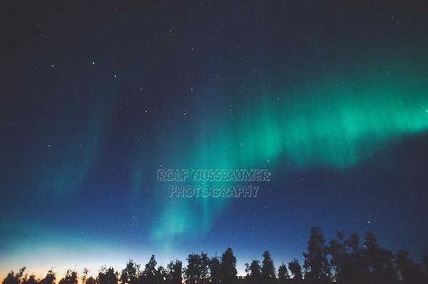 Northern Lights or Aurora Borealis, Tangle Lake, Alaska, USA