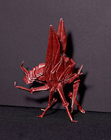 A red paper origami mosquito designed and folded by Keith Nunas, Edmonton, Canada.