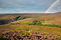Rainbow over Stainery Clough and Howden Moors. Peak District National Park, Derbyshire, UK. August.