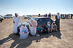ISRAEL El-Arakib, Negev desert<br />