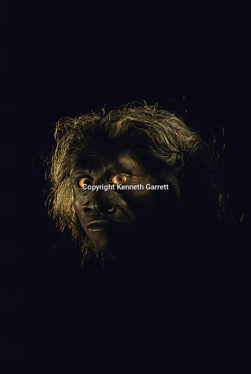 John Gurche artistic reconstruction of Homo floresiensis; 18,000 year old dwarf Homo erectus from Indonesian island of Flores