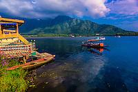 A shikara (boat) on Dal Lake in Srinagar, Kashmir, Jammu and Kashmir State, India.