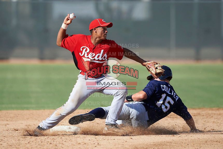 Cincinnati Reds minor league infielder Avain Rachal #78 attempts to turn a double play as Clint Coulter #15 slides in during an instructional league game against the Milwaukee Brewers at Maryvale Baseball Park on October 3, 2012 in Phoenix, Arizona.  (Mike Janes/Four Seam Images)