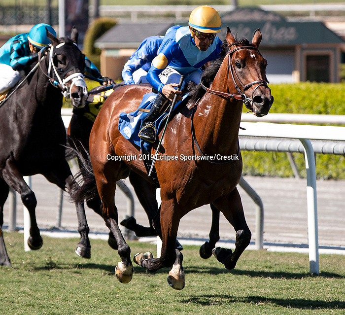 ARCADIA, CA: October 06: #3 Hit The Road wins the Zuma Beach Stakes at Santa Anita Park on October 06, 2019 in Arcadia, California (Photo by Chris Crestik/Eclipse Sportswire)