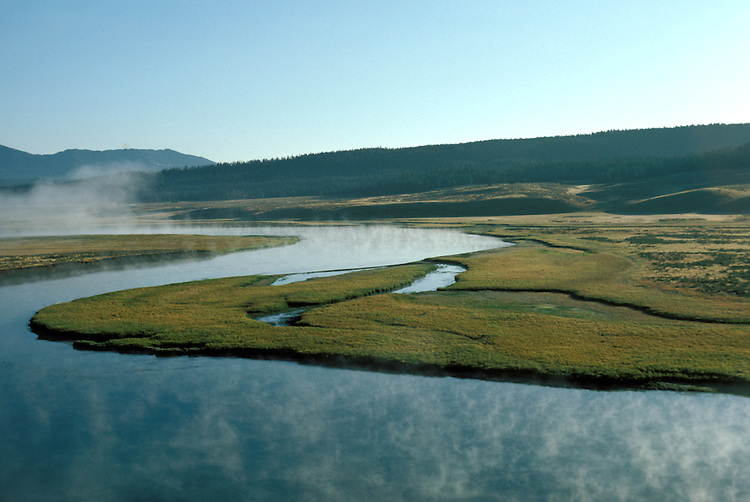 WY: Wyoming; Yellowstone National Park, Hayden Valley                 .Photo Copyright Lee Foster, lee@fostertravel.com, www.fostertravel.com, (510) 549-2202.Image: wyyell211