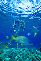 Two young sisters ages 8 & 9, enjoy snorkeling with a variety of colorful marine life at Hanauma Bay.