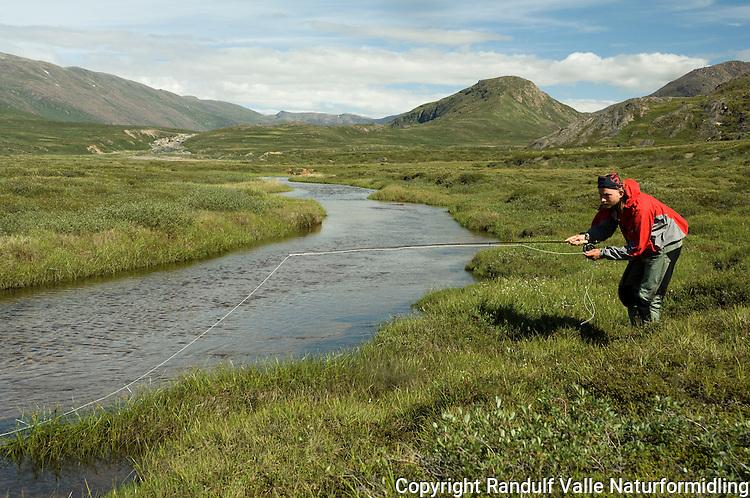 Mann fisker med flue etter sjørøye i liten elv på Vest-Grønland ---- Man fishing for actic char on West-Greenland