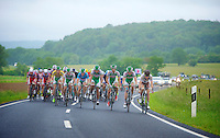 Steve Chainel (FRA) stearing<br /> <br /> 2013 Tour of Luxemburg<br /> stage 1: Luxembourg - Hautcharage (184km)