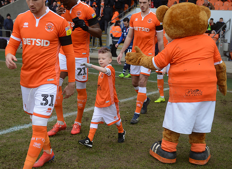 A young mascot high fives Bloomfield Bear<br /> <br /> Photographer Kevin Barnes/CameraSport<br /> <br /> The EFL Sky Bet League One - Blackpool v Walsall - Saturday 9th February 2019 - Bloomfield Road - Blackpool<br /> <br /> World Copyright &copy; 2019 CameraSport. All rights reserved. 43 Linden Ave. Countesthorpe. Leicester. England. LE8 5PG - Tel: +44 (0) 116 277 4147 - admin@camerasport.com - www.camerasport.com