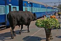 Varanasi Train Station, India