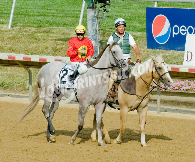 Wicked Mizz before The Delaware Oaks (gr 2) at Delaware Park on 7/14/12