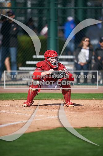 Jake Nemith (15) of Pace High School in Pace, Florida during the Under Armour All-American Pre-Season Tournament presented by Baseball Factory on January 14, 2017 at Sloan Park in Mesa, Arizona.  (Mike Janes/Mike Janes Photography)