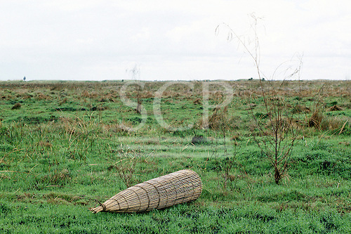Lake Bangwelu, Zambia, Africa. View of new grasses on the floodplains with a discarded fish trap.
