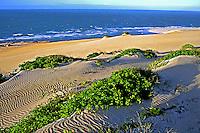 Vegetação de restinga em Canoa Quebrada, Ceará. Foto de Juca Martins.