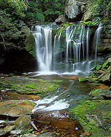 Blackwater Falls State Park, WV<br /> Elakala Falls on Shay Run flowing into Blackwater Gorge