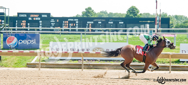 File Gumbo winning at Delaware Park on 8/26/2013