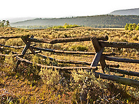 Low morning light on an old rail fence  in a high dry meadow. Jackson Hole, Wyoming, August 2007.