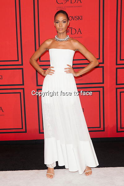 NEW YORK, NY - JUNE 3: Joan Smalls at the 2013 CFDA Fashion Awards at Lincoln Center's Alice Tully Hall in New York City. June 3, 2013. <br />