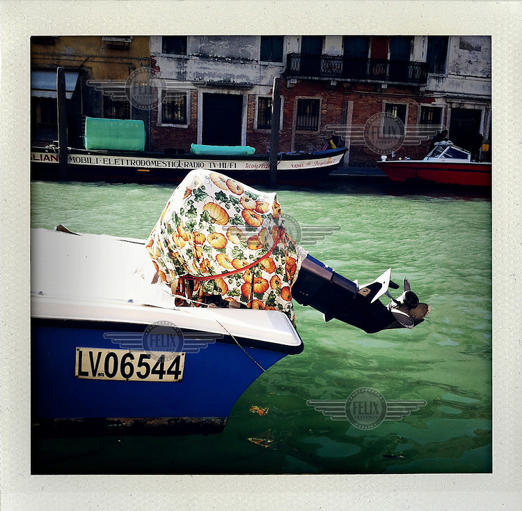 A moored motorboat on a Venetian canal, its raised engine protected by a pumpkin motif tablecloth.