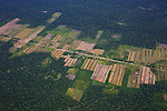 Bolivia, Santa Cruz Department, aerial view of agricultural fields in the midst of Amazonian rainforest