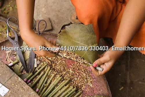 Village woman making a cheroot cigar outside her home in Myin Kae Ba village, Bagan pagan Burma Myanmar. 2006