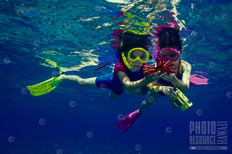 Two young girls with underwater camera  looking at pencil sea urchin at Hanauma bay, Oahu