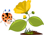 Stock vector illustration of a funny ladybug jumping sliding over a leaf of a plant with yellow flowers.<br />