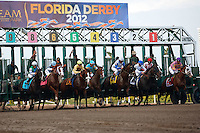 The start of the Florida Derby (G1) Gulfstream Park Hallandale Beach Florida. 03-31-2012. Arron Haggart/Eclipse Sportswire